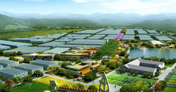 农业绿色发展取得新成效