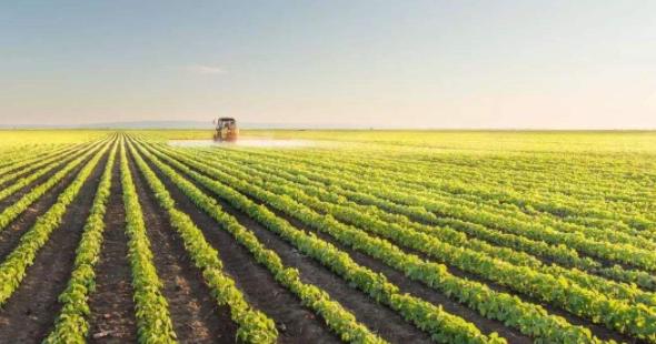 不误农时 统筹抓好防疫推进农业生产