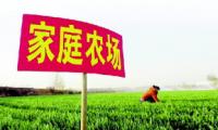 """安徽省郎溪县: """"五个聚力""""培优家庭农场"""